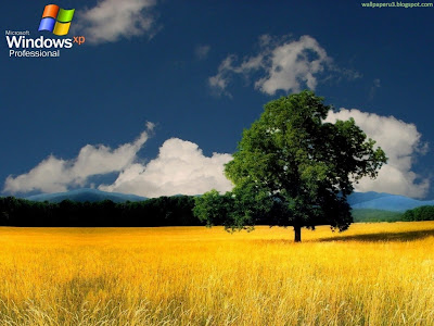 Windows XP Standard Resolution Wallpaper 35