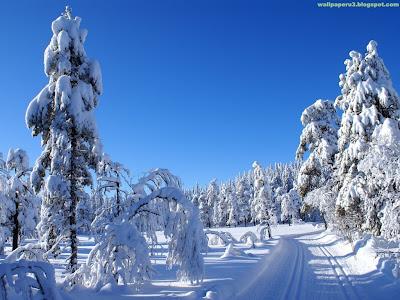 Winter Season Standard Resolution Wallpaper 20