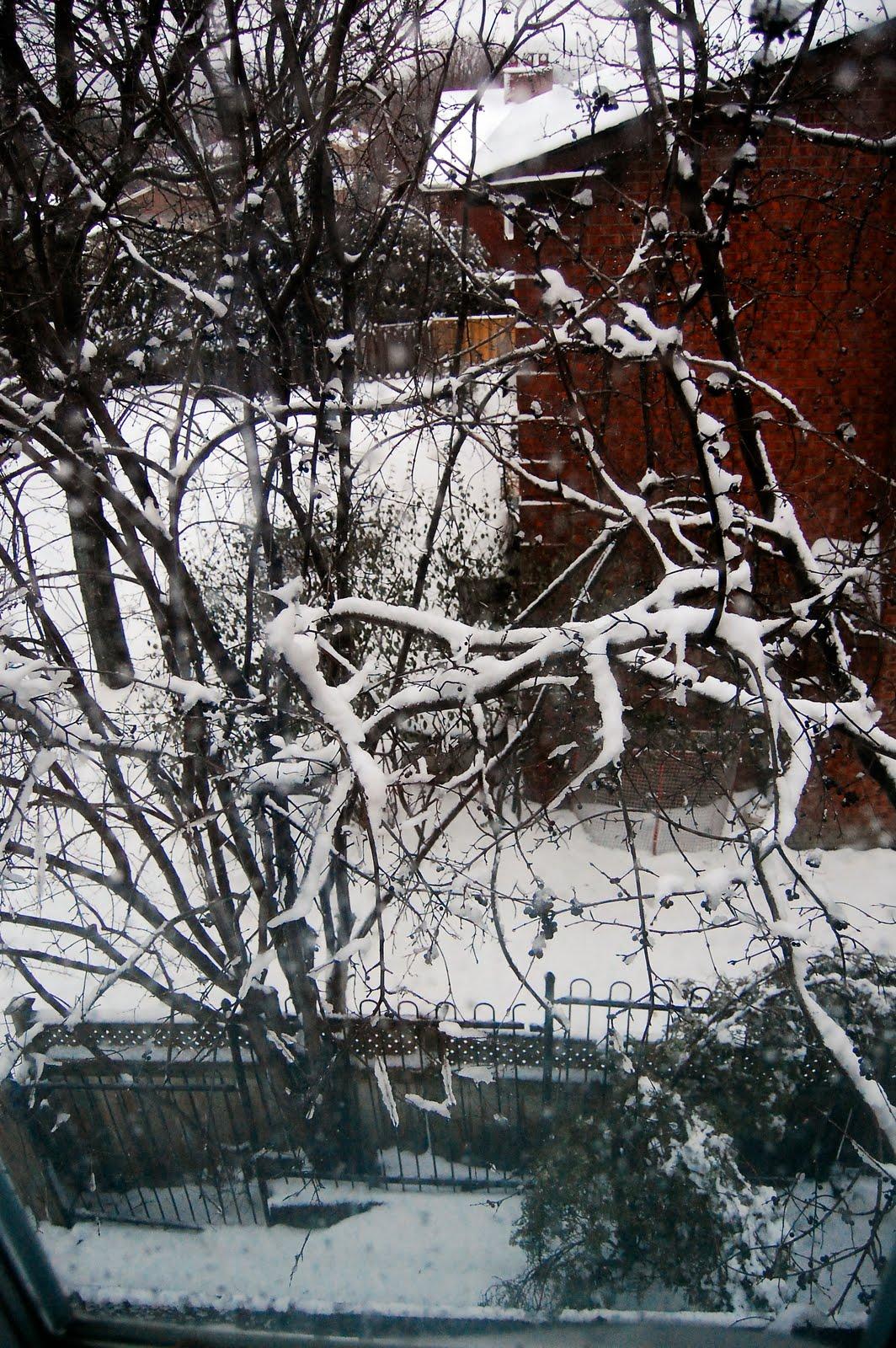 [snow+3]