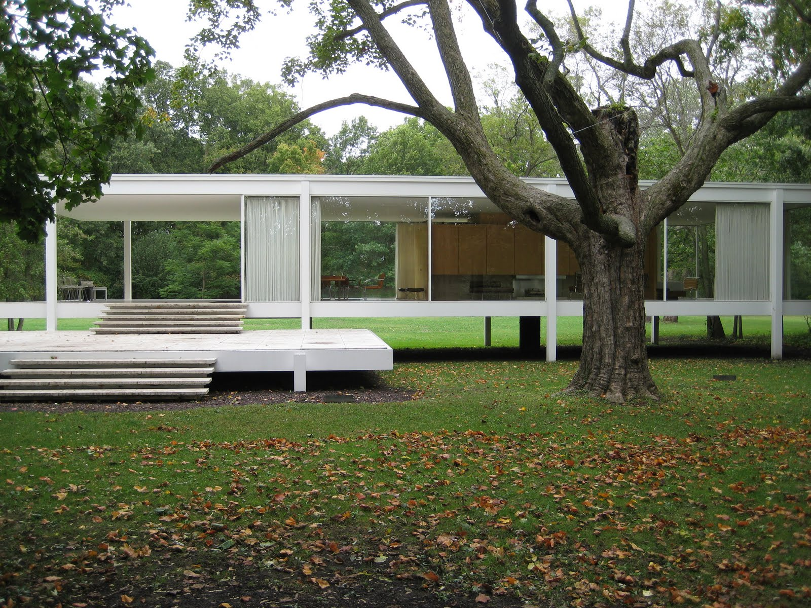birds of ohio farnsworth house. Black Bedroom Furniture Sets. Home Design Ideas