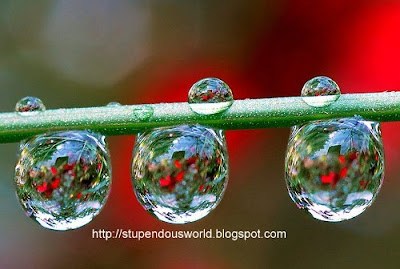 Cool photos of WaterDrop