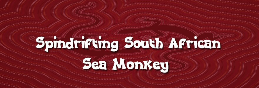 Spindrifting South African sea monkey