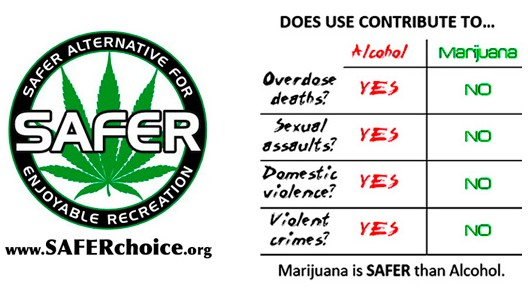 an introduction to the comparison of alcohol and marijuana Acute as well as chronic use of both alcohol and cannabis can  for alcohol  dependent groups or heavy drinkers in comparison to.