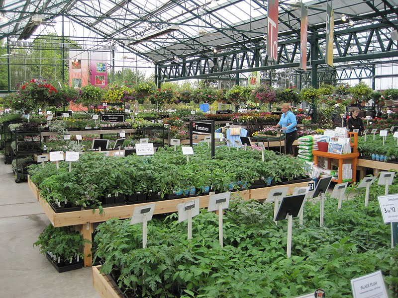 I Stopped By Swansons Nursery This Weekend And Was Amazed At How Many Folks Were Ping For Plants On An Overcast Day M Guessing That The Place Will Be