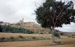 Nogueira em Aldehuela