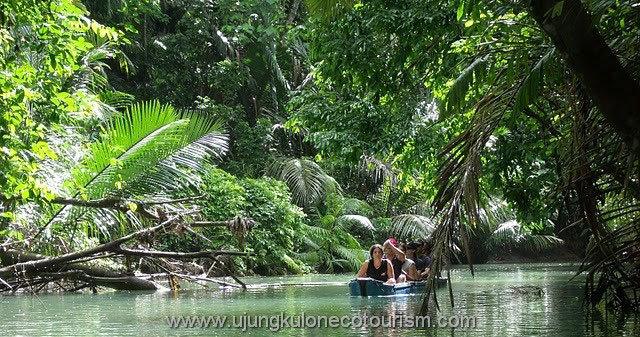 Ujung Kulon Tour Package Price