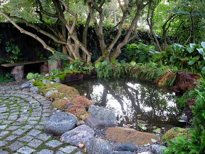 Trädgård trädgård damm : LÄNNINGE TRÄDGÅRD: Damm nummer fem