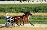 Trotting Standardbred with Sulky at Harness Track