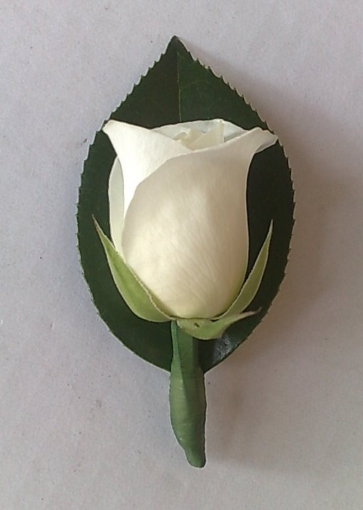 had a single white rose