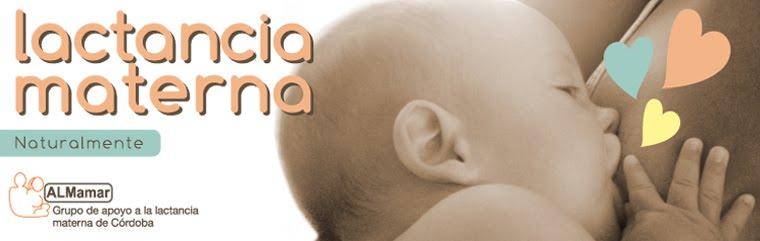 """Grupo de Apoyo a la Lactancia Materna """"ALMamar"""""""