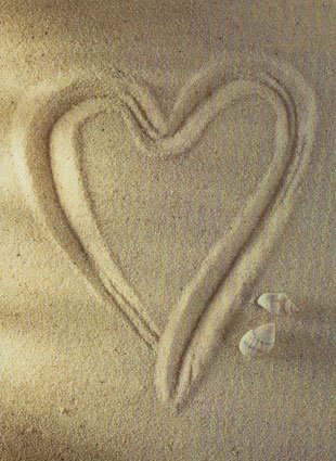 November 1st, 2009 at 05:33am Love heart in the sand by a crab