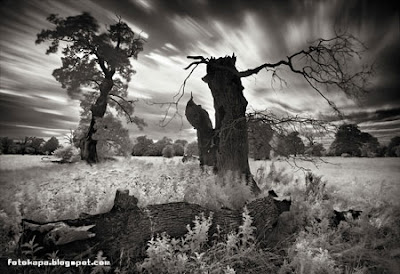 Photoworks by Marcin Stawiarz