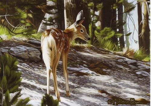 [little_deer_card.sized]