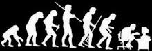 FINAL DE LA EVOLUCION