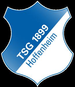 tsg-1899-hoffenheim-ist-in-die-1-bundesliga-aufges.png