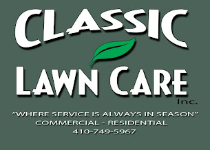 Classic Lawn Care