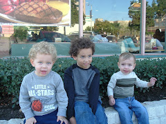 My 3 grandsons