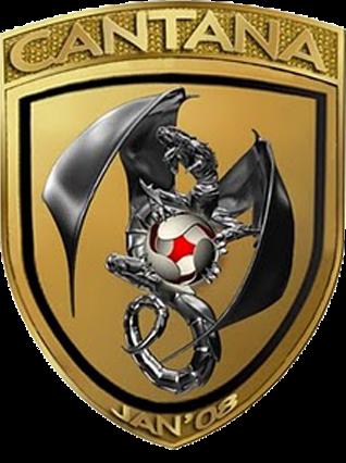 Logo pasukan bola