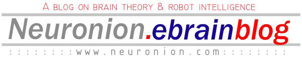 Neuronion Blog: Brain theory, eBrain architecture & robot intelligence