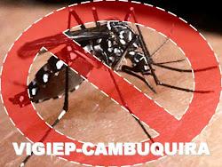 Vigiep-Cambuquira