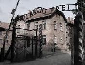Especial 65è aniversari alliberament dels camps de concentració