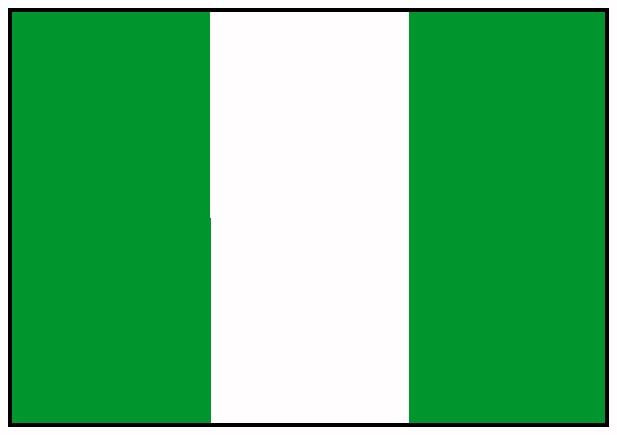 Africa do Sul 2010: Seleção da Nigéria
