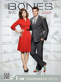 Download Bones 6ª Temporada Legendada