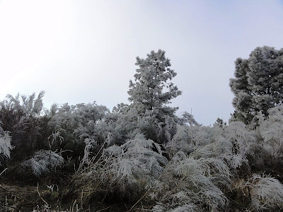 Acima das nuvens na Serra de Bornes