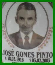 JOSÉ GOMES PINTO