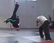 Choy Li Fut - Back Flip