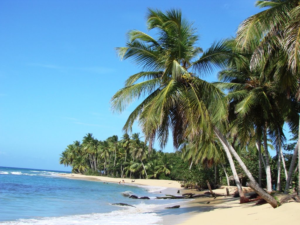 Punta Cana Vik Hotel Arena Blanca And Cayena Beach