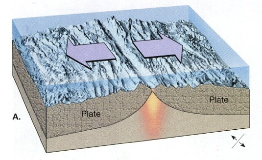 sea floor spreading Sea-floor spreading is the process in which the ocean floor is extended when two plates move apart plates are huge slabs into which the crust as well as the upper part of the mantle (the.
