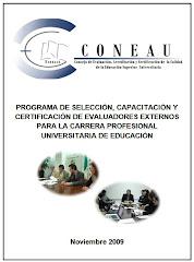 Evaluadores Externos - PROGRAMA-DEA-CONEAU