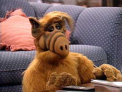 Character Alf