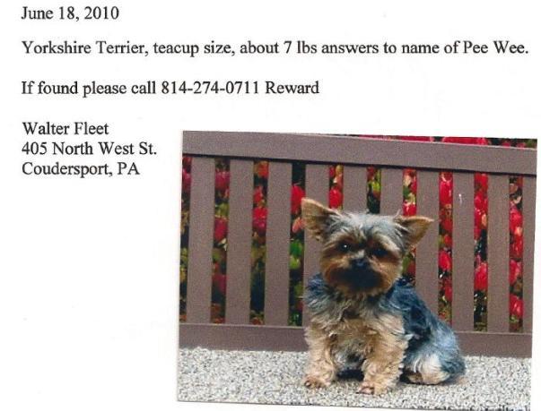 http://4.bp.blogspot.com/_Ah1YLDg8Hfg/TBwsxryng6I/AAAAAAAAPNk/Q1olmB9wWe8/s1600/Lost+dog.jpg