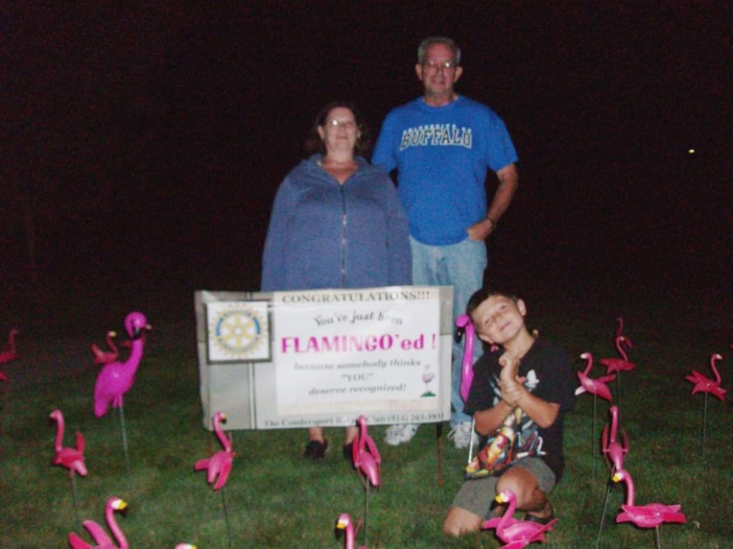 http://4.bp.blogspot.com/_Ah1YLDg8Hfg/TFOIKCcmeKI/AAAAAAAAQMU/V0987UY4K-I/s1600/Flamingos+001.jpg