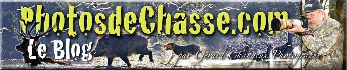 Le Blog de Photos de Chasse
