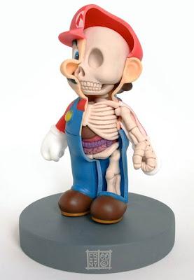 Imagen de estudiando anatomía con Mario