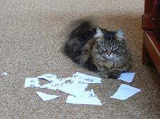 Ms S - the cat ate my homework!
