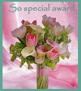 So Special Award