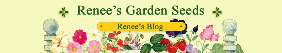 Renee's Garden Seeds: Renee's Blog