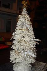 Un pino blanco!