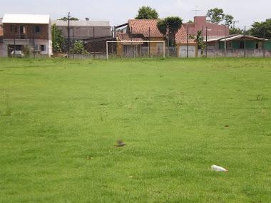 Campo de Futebol adubado com composto  orgânico