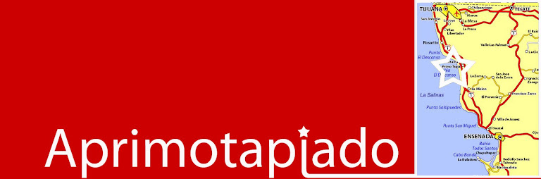 APRIMOTAPIADO