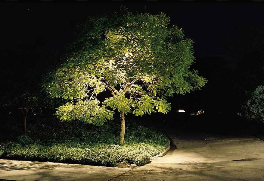 Iluminaci n de jardines y exteriores jardines con alma for Iluminacion exterior para arboles