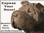Expose your nose!