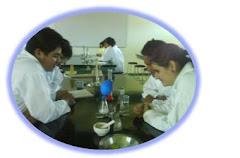 Laboratorio Quimica 2