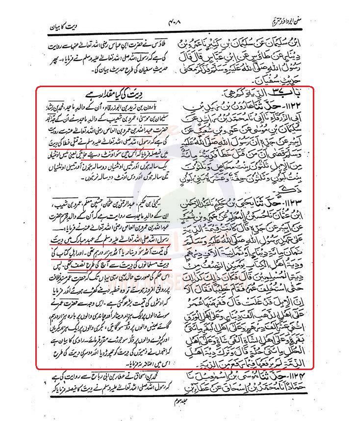 Aorat  ki  Diyat SADJ3_0408Nafseislam