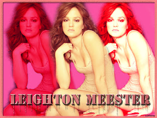 pictures and wallpapers of Leighton Meester
