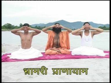 To overcome Playfulness of Mind , Bhramari Pranayama